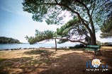 Photo gallery of Rovinj - Bay Cuvi 5