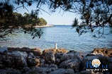 Photo gallery of Rovinj - Skaraba 27