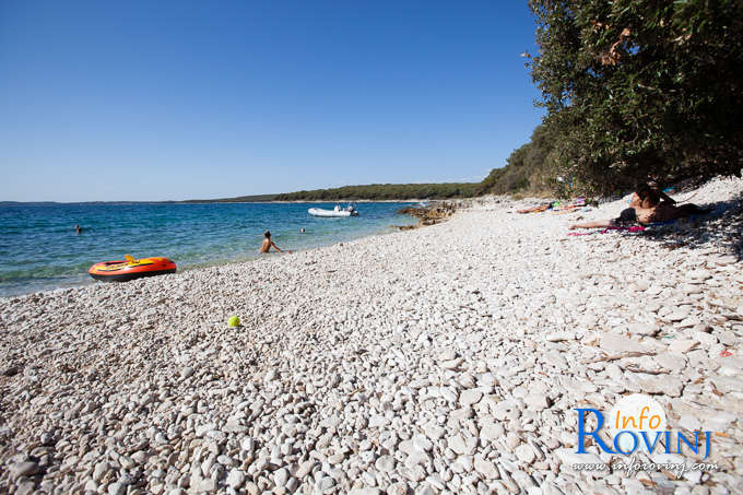 Beaches in Rovinj: Bay Gustinja